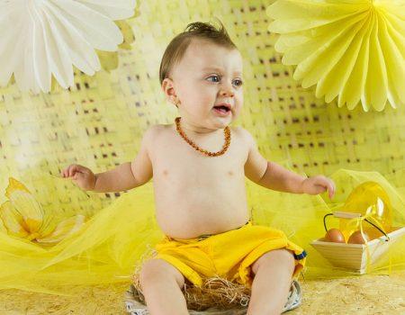 Bébé poussin de pâques devient grand!