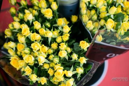 photo reportage flower party truffaut bordeaux by modaliza photographe-15