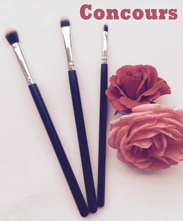 set pinceau concours suany makeup copie