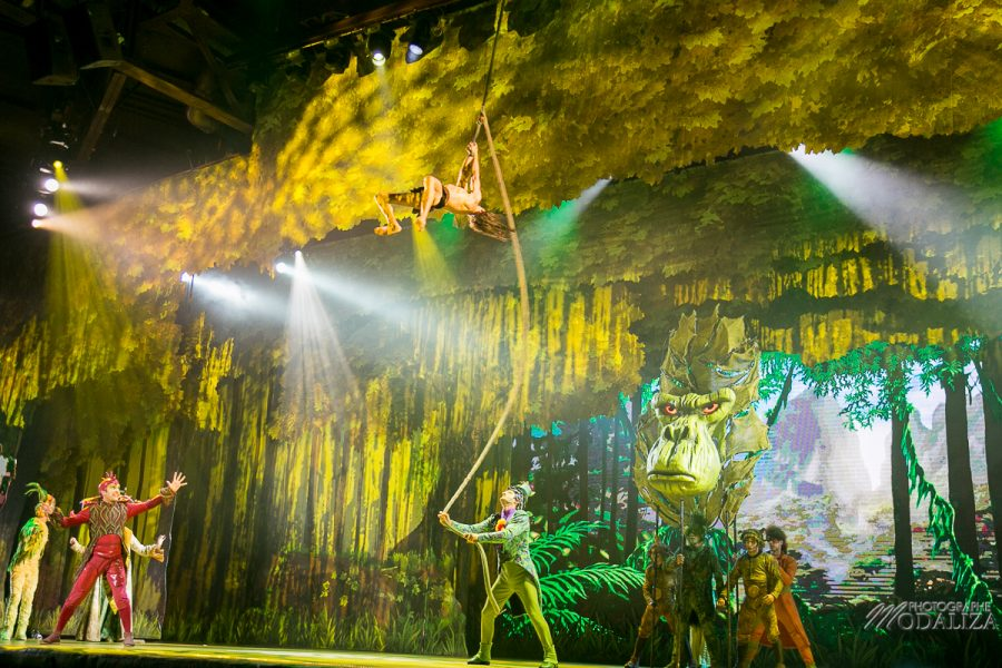 photo disneyland paris foret enchantee spectacle 25 ans baloo pocahontas rebelle tarzan raiponce by modaliza photographe-6510