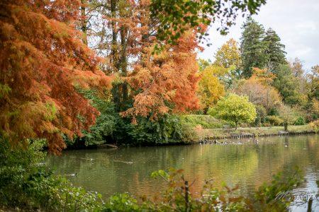 parcs de bordeaux parc de bourran maman blogueuse sorties loisirs blog bordeaux gironde by modaliza photographe-1151