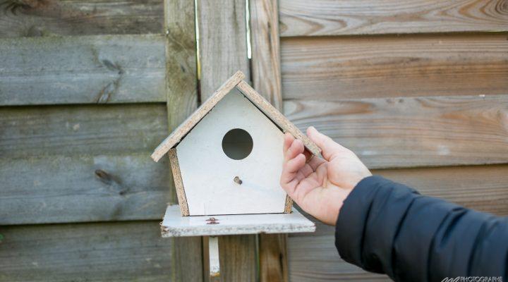 Atelier kids : cabane à oiseaux DIY