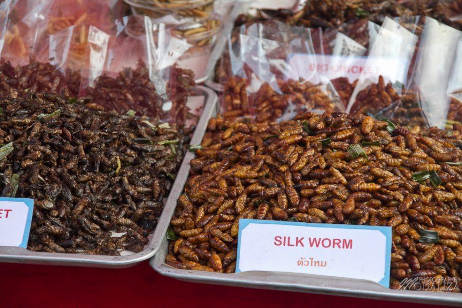 photo thailande chiang mai marché de nuit artisanat by modaliza photographe-6779