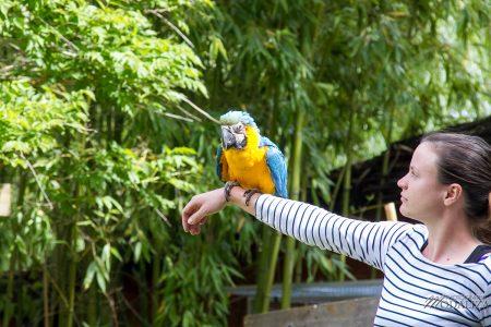 photo animaux sortie famille bordeaux maman blogueuse zoo pessac by modaliza photographe-5137