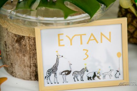 photo anniversaire safari jungle party inspiration decoration maman blogueuse blog by modaliza photographe-5843