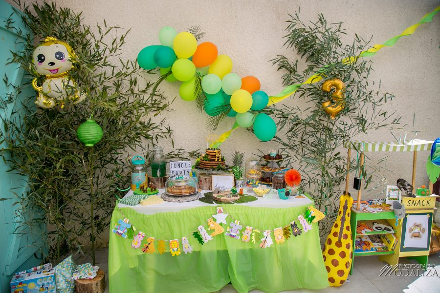 photo anniversaire safari jungle party inspiration decoration maman blogueuse blog by modaliza photographe-5890