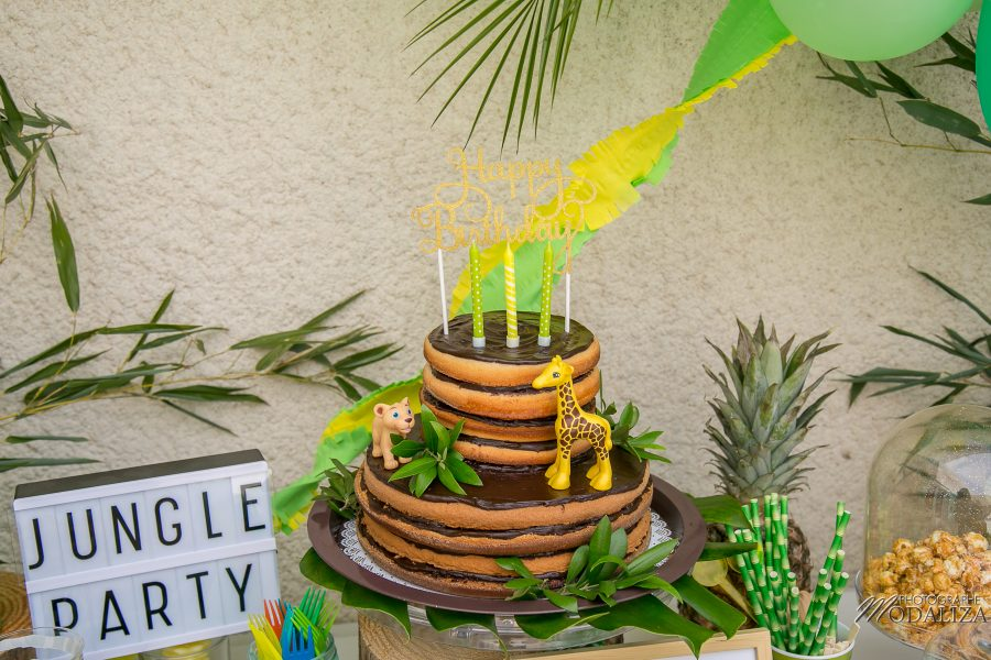 photo anniversaire safari jungle party inspiration naked cake maman blogueuse blog by modaliza photographe-5893