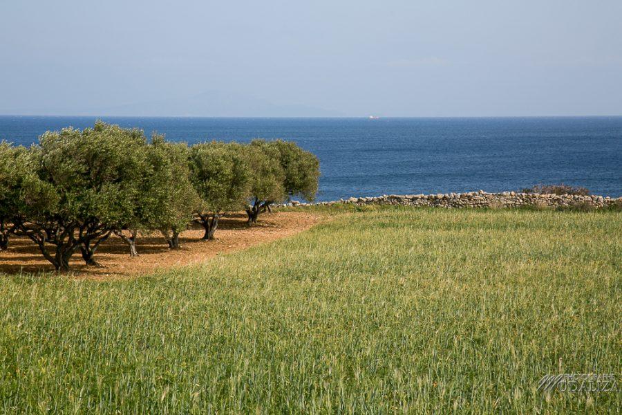 paros travel blog guide voyage grece cyclades avec enfant 4 jours sejour by modaliza photographe-3702