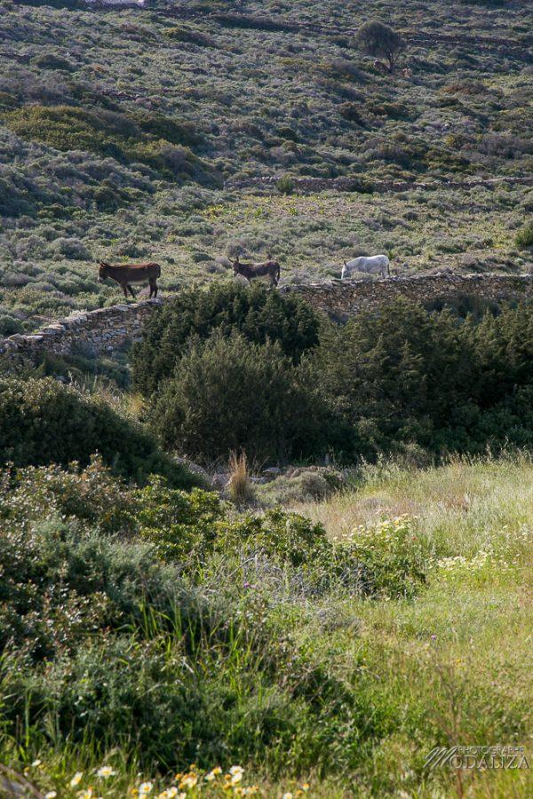 paros travel blog guide voyage grece cyclades avec enfant 4 jours sejour by modaliza photographe-3708