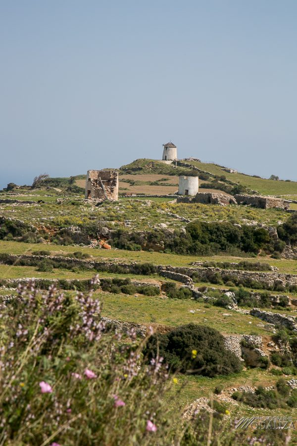paros travel blog guide voyage grece cyclades avec enfant 4 jours sejour by modaliza photographe-4024