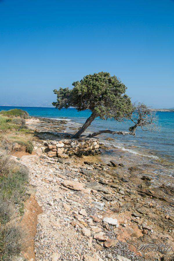 paros travel blog guide voyage grece cyclades avec enfant 4 jours sejour by modaliza photographe-4198