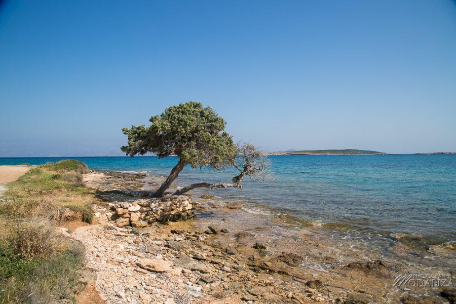 paros travel blog guide voyage grece cyclades avec enfant 4 jours sejour by modaliza photographe-4199
