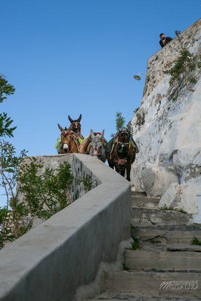 santorin travel blog guide voyage fira grece avec enfant weekend court sejour by modaliza photographe-3318