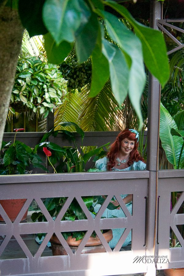 disney orlando disneyworld rencontre avec ariel petite syrene little mermaid by modaliza blog-22