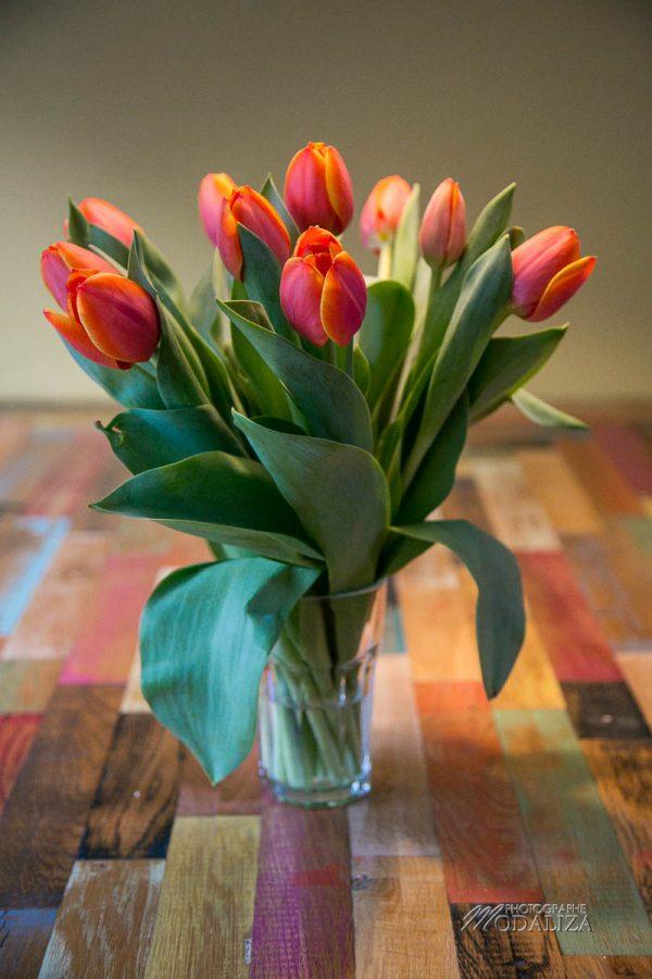 tulipes amsterdam bon plan voyage blogueuse travel blog hebergement pas cher by modaliza photographe-9598