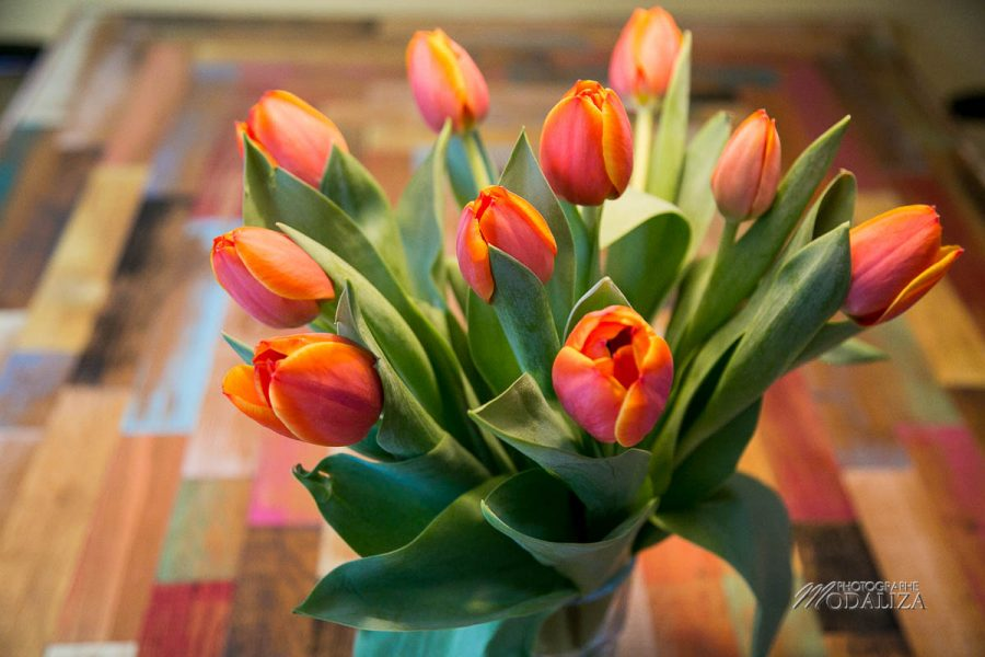 tulipes amsterdam bon plan voyage blogueuse travel blog hebergement pas cher by modaliza photographe-9602