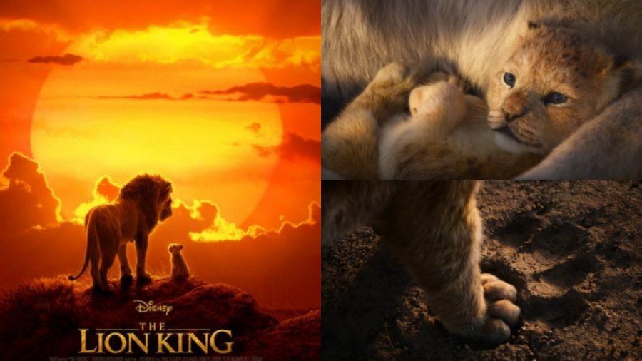 le roi lion avis maman blog modaliza vacances en famille